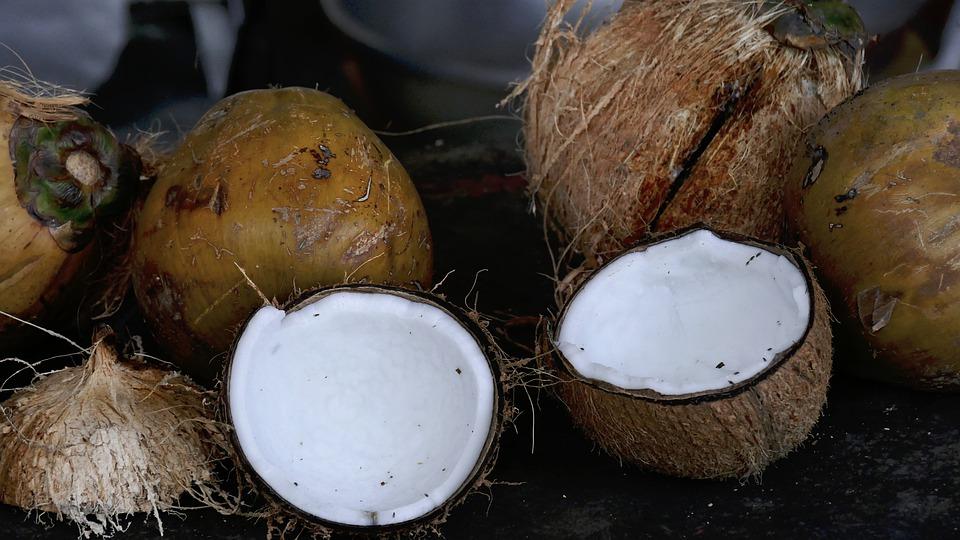 rozřízlý kokos